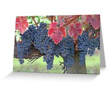 Grapes, Napa Valley, California Greeting Card