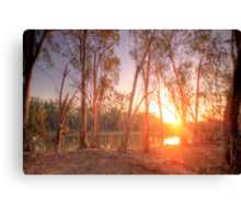 River Murray Sunset I - Renmark, South Australia Canvas Print