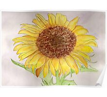 A Sunflower for Lady Liberty.  Poster