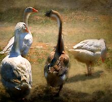 What's Good For The Goose... by Mark Richards