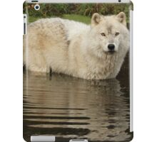 Autumn reflection iPad Case/Skin