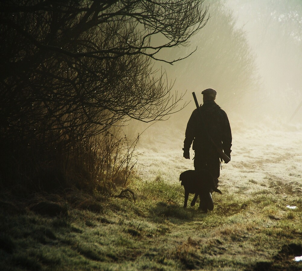 hunting pheasants on a misty morning  by Alan Mattison