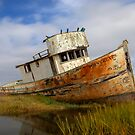Point Reyes Shipwreck, Point Reyes, California by Brendon Perkins