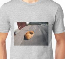 Wide angle view from the perspective distortion on the homeless cat Unisex T-Shirt
