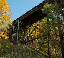 Trestle To Fall by Al Duke