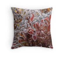 A beautiful morning show of sparkles Throw Pillow