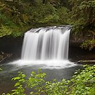 Upper Butte Creek Falls, Oregon by Brendon Perkins