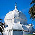 Conservatory of Flowers, San Francisco by Phill Danze