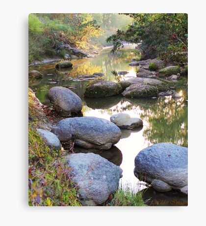 Creek in the Fall Canvas Print
