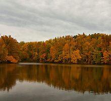 Trees at the Lake by Sandy Keeton