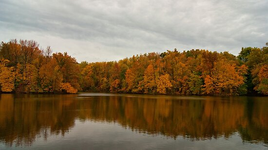 Trees at the Lake by Sandy Keeton