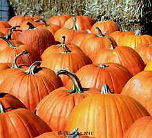 Jack O'Lantern Waiting Line by Betty Northcutt