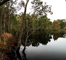 Entry Lagoon by Matt-Dowse