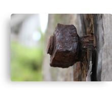 Rusted Screw Canvas Print