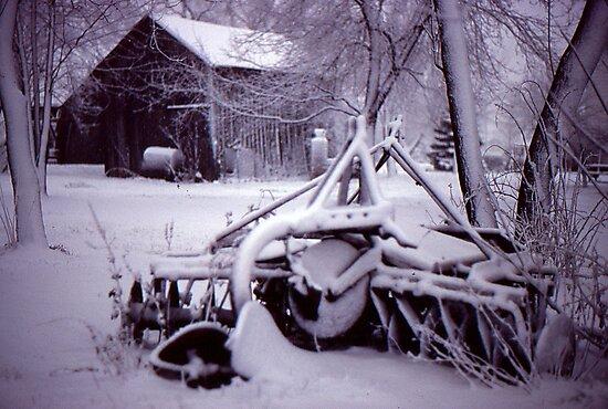 Vintage Farm Plow by Phil Campus