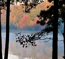 Misty Morning at the Park by Betty Maxey