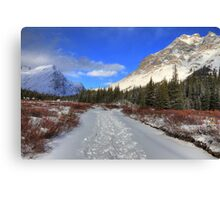 Elbow Pass valley IX Canvas Print