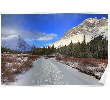 Elbow Pass valley IX Poster