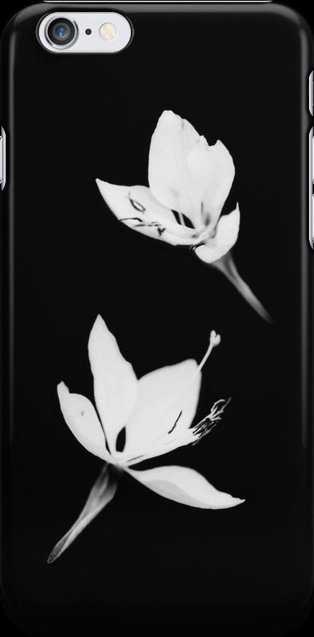 White|Black [iPhone / iPod Case] by Damienne Bingham