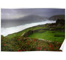 The Irish Coast Poster