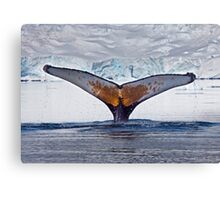 Having a Whale of a Time (Humpback Whale, Paradise Bay, Antarctic Peninsula) Canvas Print