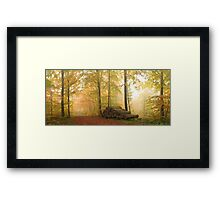 Soon it's winter..... (panoramic) Framed Print