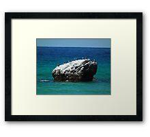 Cormorants Castle Framed Print