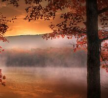 Autumn Atmosphere by Lori Deiter