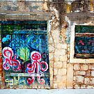 The Essence of Croatia - Forsaken House V by Igor Shrayer