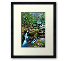 Roaring Fork, Soft Spill Framed Print