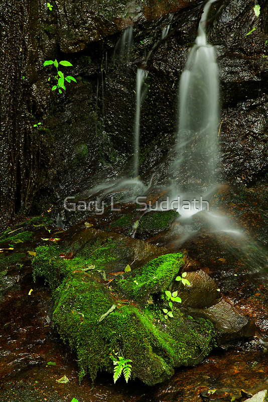 In A Still Small Voice by Gary L   Suddath
