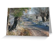 First frost in rural pathway Greeting Card