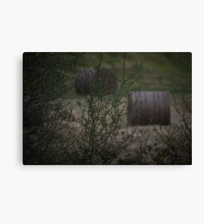 The Zoom Test Canvas Print