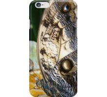Butterfly & Orange iPhone Case/Skin