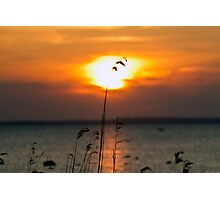 Sunset in Hiiumaa Photographic Print