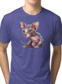 Cataclysm - Sphynx Kitten - Sphinx and Pyramids Tri-blend T-Shirt