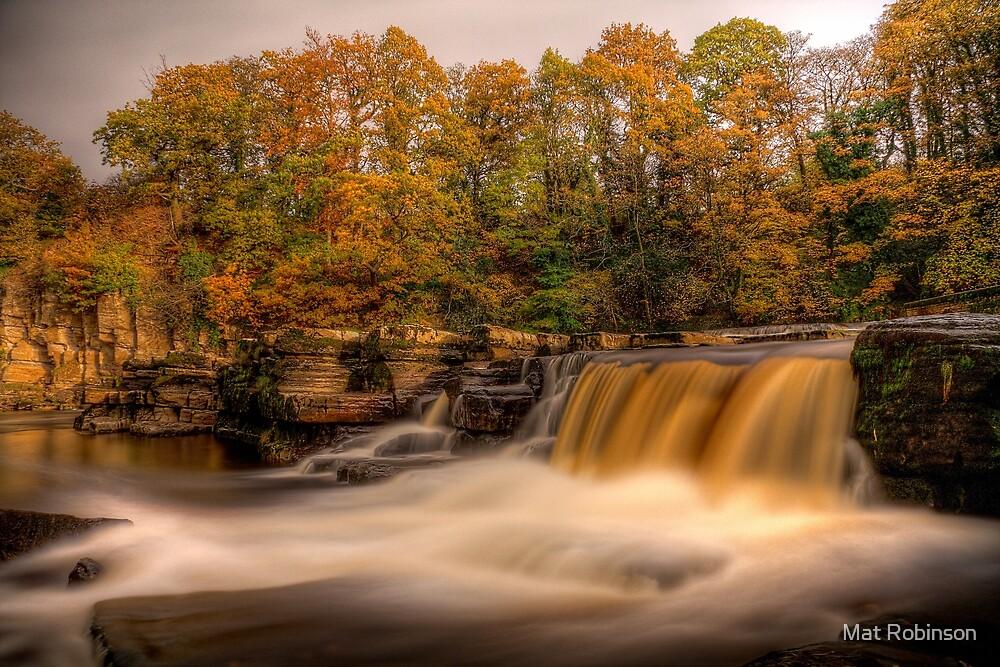 Autumn In Richmond by Mat Robinson