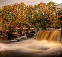 Autumn In Richmond by Mat Robinson