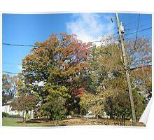 Fall 2011, Sky Blue Poster