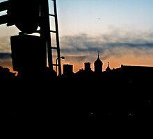 Silhouette. Toompea. by tutulele