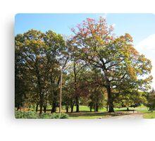 Fall 2011, Due East 2 Canvas Print