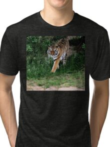 Are You Lunch? Tri-blend T-Shirt