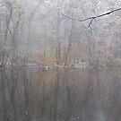 Fall meets Winter by mikepaulhamus