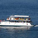Starting a tour at the Banderas Bay/Puerto Vallarta  III by PtoVallartaMex