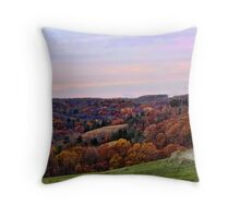 Driving on a country lane Throw Pillow