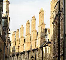 Tudor Buildings, The Backs, Cambridge, England by Steve