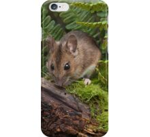 Woodmouse on a Log iPhone Case/Skin