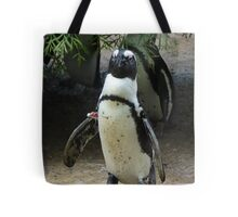 What's A Penguin To Do Tote Bag