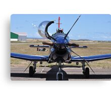 Silver Falcons Canvas Print