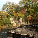 Richmond Falls 2 by Laura Jane Robinson